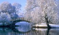 Hình nền mùa đông đẹp