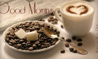 Beautiful Lovely Good Morning HD Wallpaper