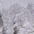 Hình nền mùa đông